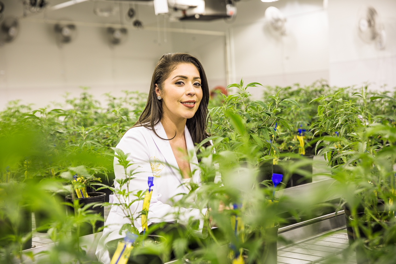 Priscilla Vilchis: The Female Face Of Cannabis In The US